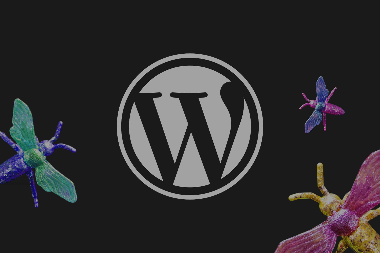 Wie Sie Ihre WordPress schützen und Vertrauen schaffen!